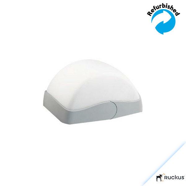 Ruckus Wireless ZoneFlex 2942 802.11g Access Point 901-2942-EU01